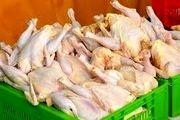 فیلم: وعده ارزانی مرغ در هفته آینده
