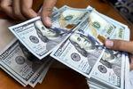 نوسان اندک نرخ در بازار ارز؛ قیمت دلار تغییر نکرد