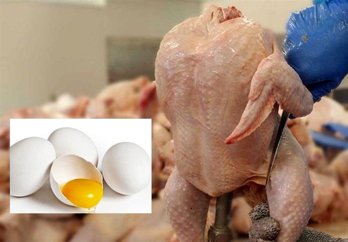 واکنش فعالان مرغ و تخممرغ به حذف دلار ۴۲۰۰
