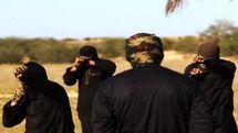 قطع حقوق تعداد زیادی از اعضای داعش