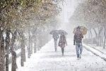 هوای تهران در ۳ بهمن ماه؛ برفی و پاک است