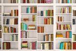 اینفوگرافیک: پیشنهاد کتاب های مفید، اتحادیه ابلهان