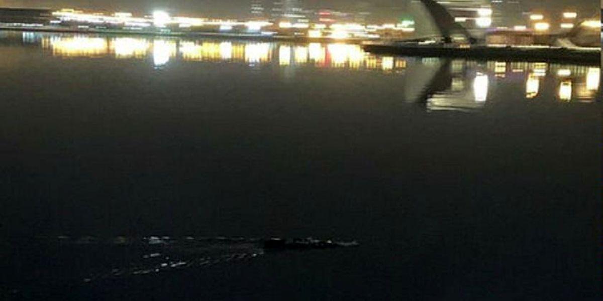 ورود آتشنشانی تهران به ماجرای تمساح دریاچه چیتگر
