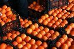 قیمت پرتقال در باغ ٢٠٠٠ تومان؛ فروش در بازار۲۰ هزار تومان!