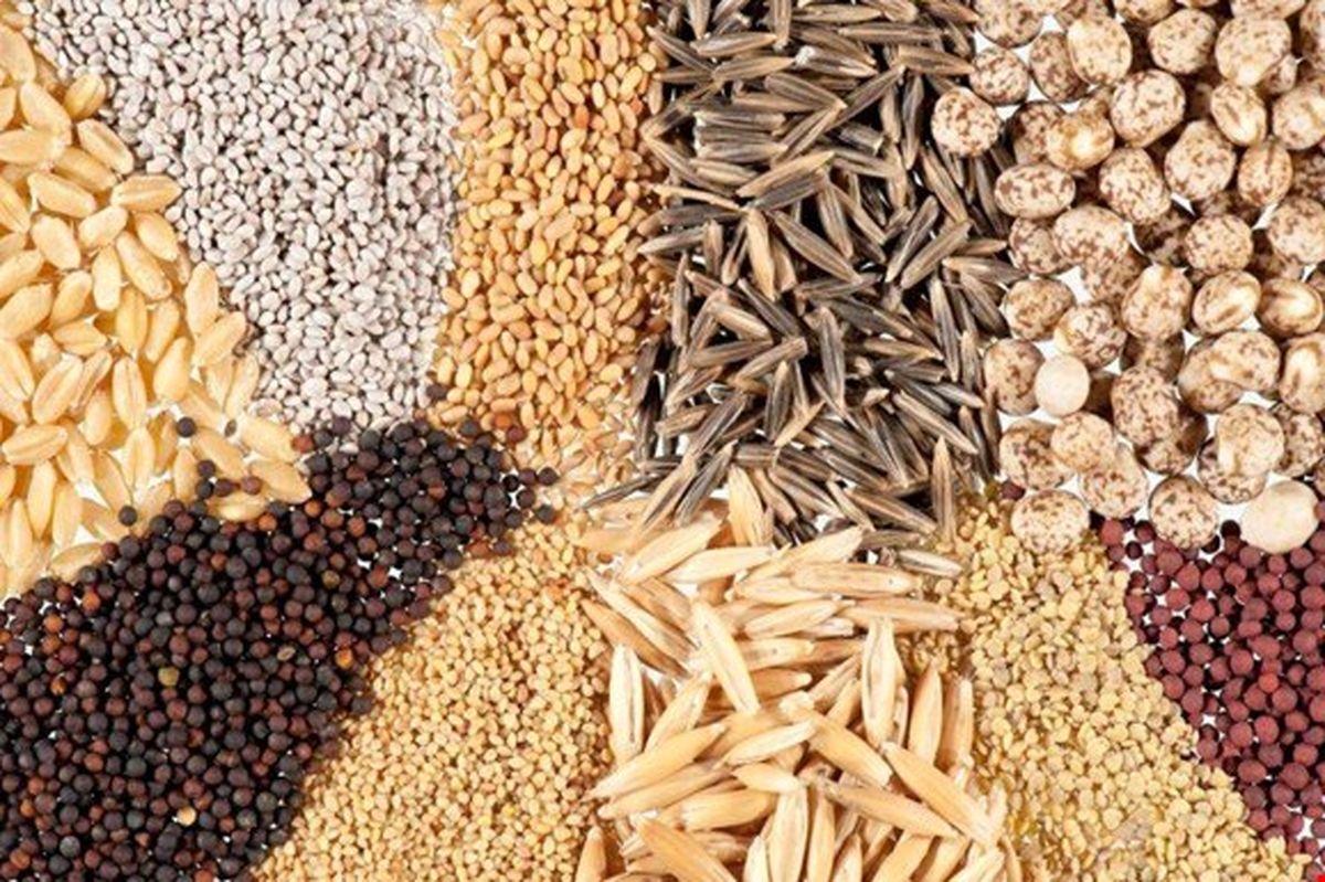 رشد ۱۰۰۰ درصدی واردات بذر زینتی